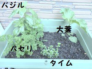 20150605a2